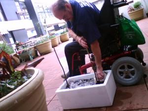 David busy Planting